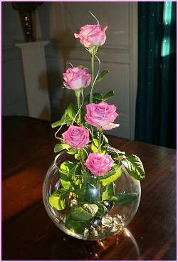 Roses and Fishbowl!