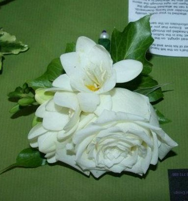 Rose and freesia grooms buttonhole