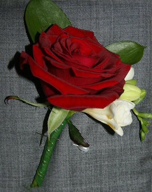 Traditional red rose and freesia buttonhole
