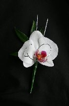 Singapore orchid buttonhole with silver overlay