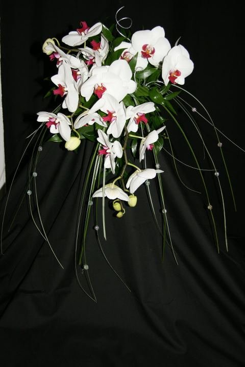 White orchid bride or bridesmaid bouquet