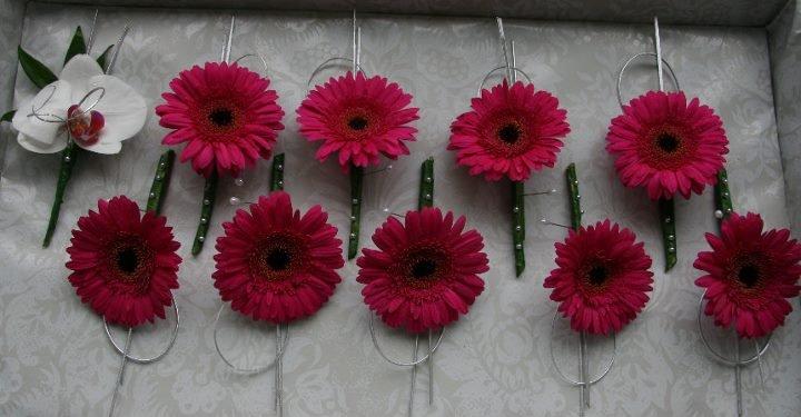 Pink Gerbera buttonholes