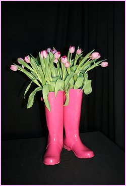Pink Welly Fun!
